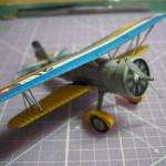 Curtiss Hawk II - Der Kamppflieger